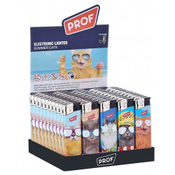 BRIQUET SUMMER CATS